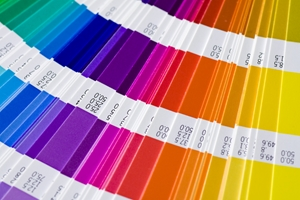 Your Ultimate Colorbond 174 Steel Colour Guide