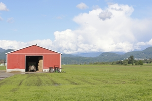 Find out everything you need to know about building a barn here.